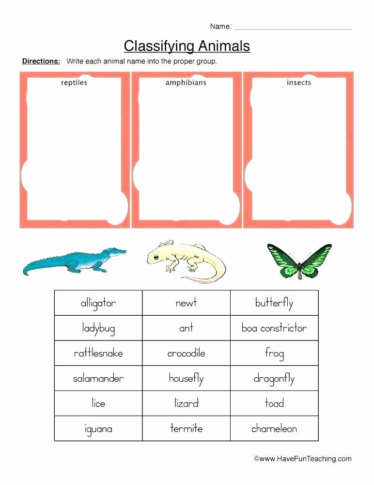 Amphibian Worksheets for Second Grade World War Worksheets 2 Food Rationing During Ii Worksheet