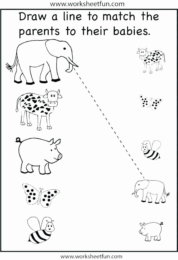 Animal and their Habitats Worksheets Grade 2 Science Worksheets Animals Grade 1 Science Lesson 3