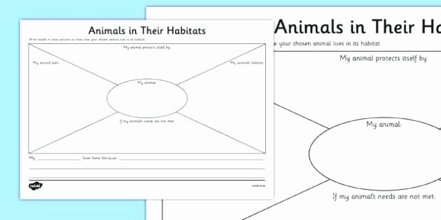 Animal and their Habitats Worksheets the Correct to Habitat Invite Animals Habitats Worksheets