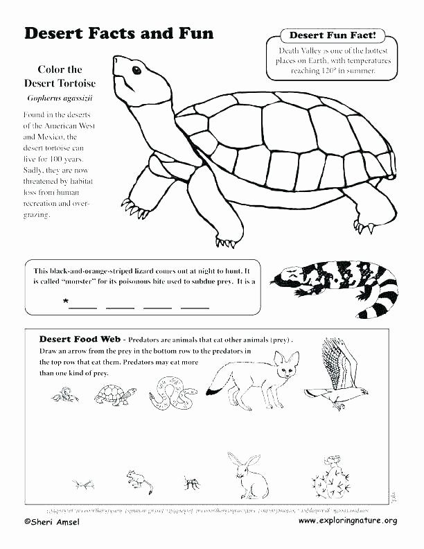 Animal Habitat Worksheets for Kindergarten Animal Habitats for Kids Worksheets