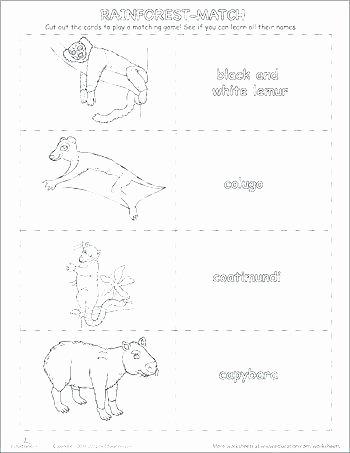 Animal Habitat Worksheets for Kindergarten Animals Habitats Worksheets Matching Animal Worksheet Year 1