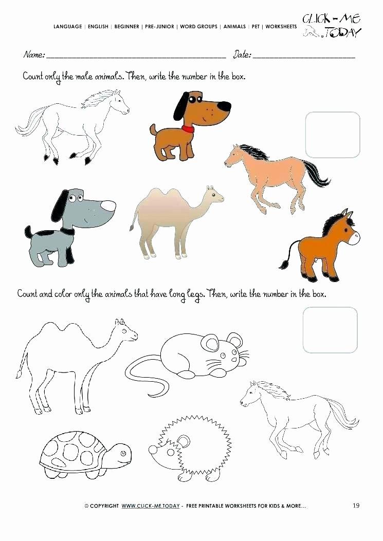 Animal Habitat Worksheets for Kindergarten Free Printable Zoo Animals Worksheets Download them Print