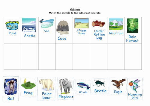 Animal Habitat Worksheets for Kindergarten Match the Animals to their Habitats