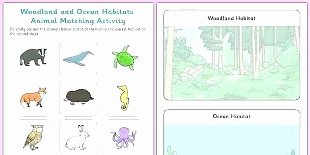 Animal Habitat Worksheets for Kindergarten Worksheets On Habitats – Trungcollection