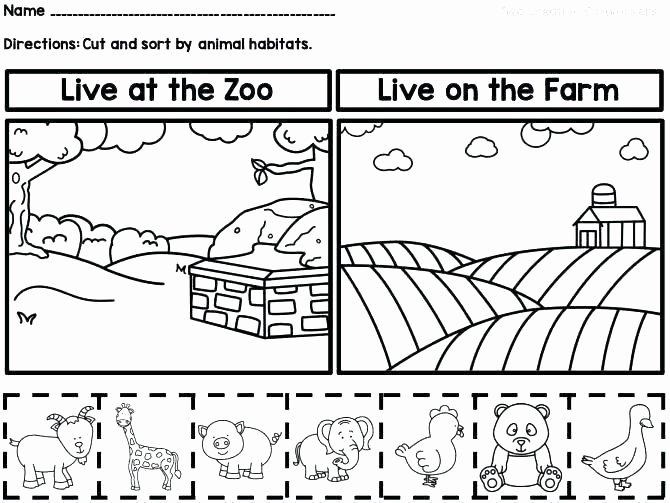 Animals and their Habitats Worksheet Animals In their Habitats Worksheets