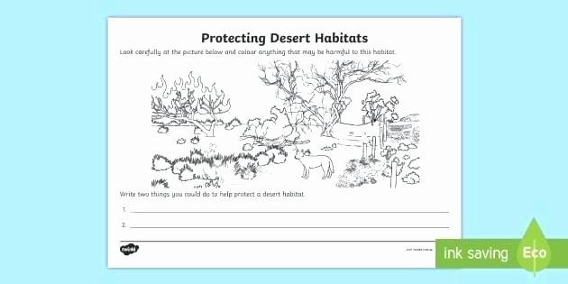 Animals and their Habitats Worksheet Desert Habitat Worksheets