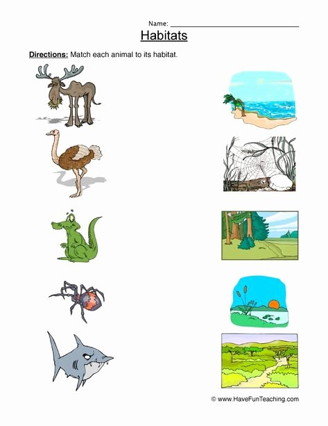 Animals and their Habitats Worksheets Animal Habitat Worksheet for Kids 3