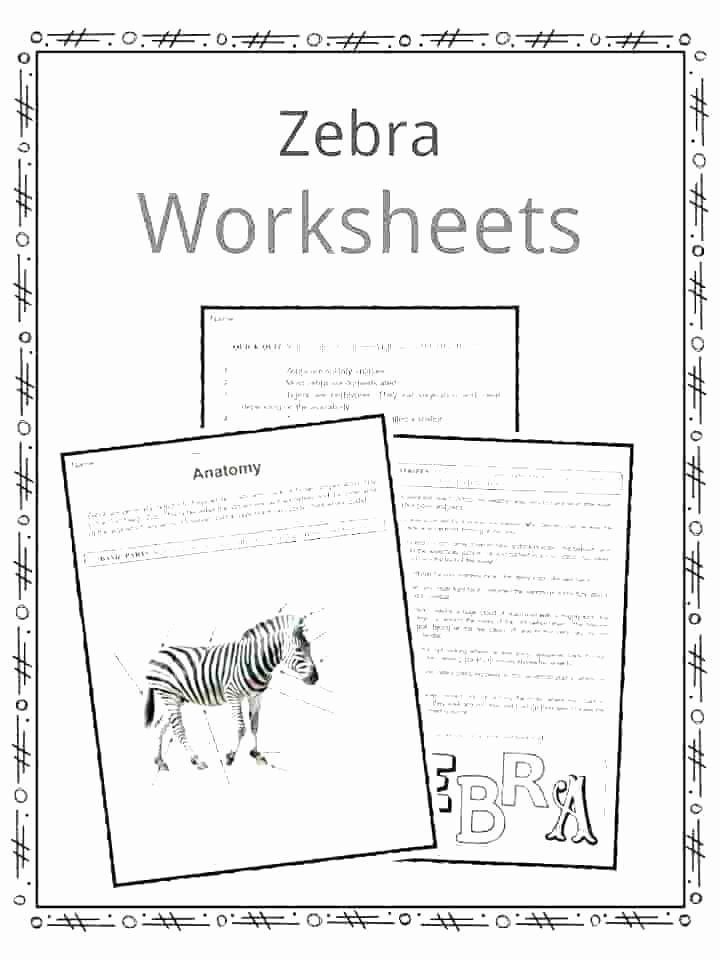 Animals and their Habitats Worksheets Related Worksheets Habitat Worksheets Ocean Habitat