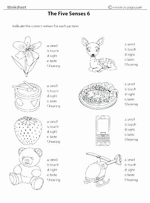 Apple Worksheets Kindergarten Unique Kindergarten Sat Practice Worksheets