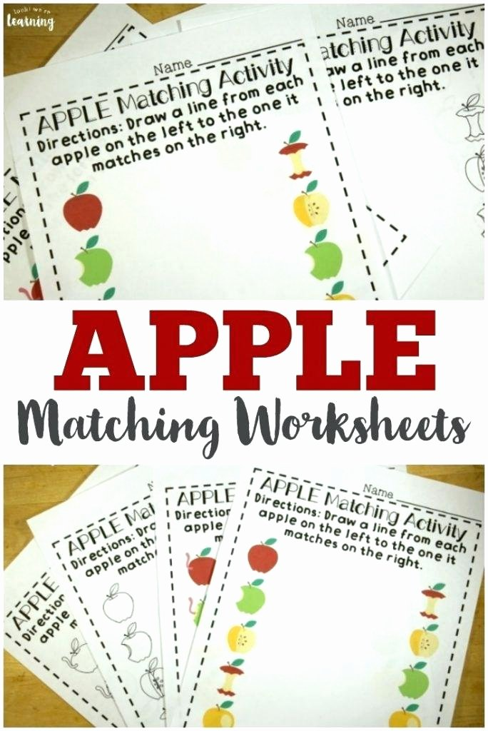Apple Worksheets Preschool Preschool Matching Worksheets