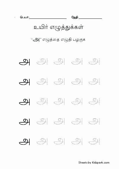 Arabic Letters Worksheets Alphabet Writing Practice Worksheet Arabic Worksheets