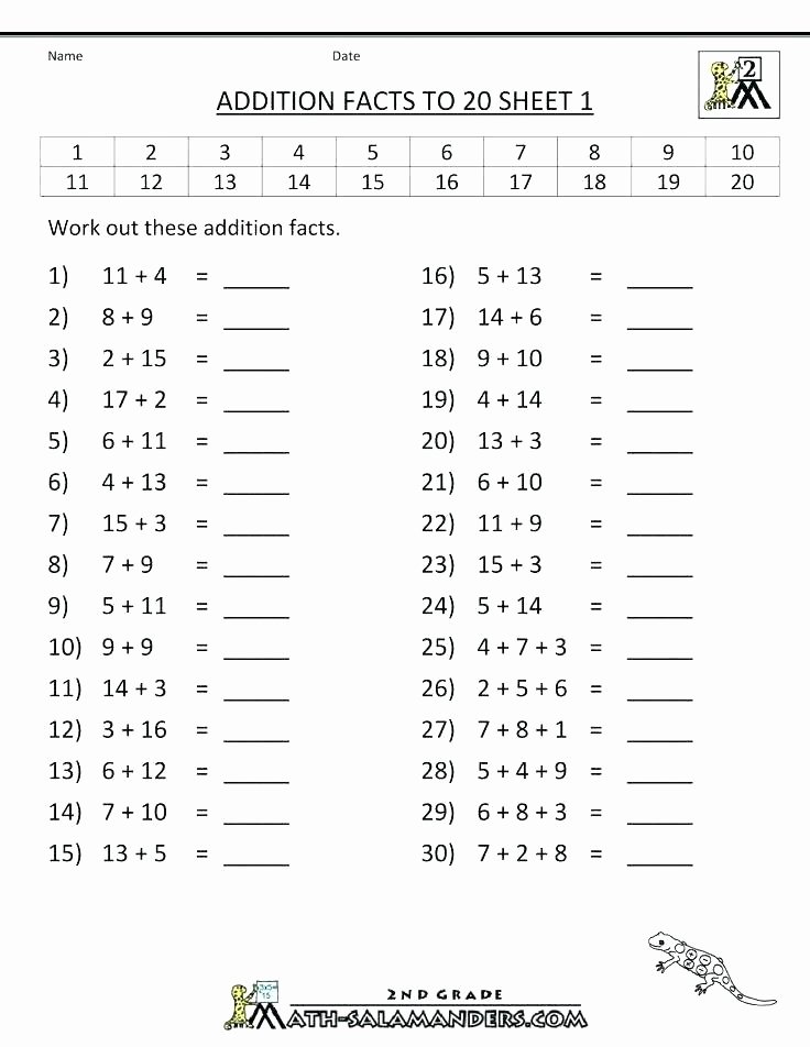 Basic Division Fact Worksheets Basic Math Practice Worksheets