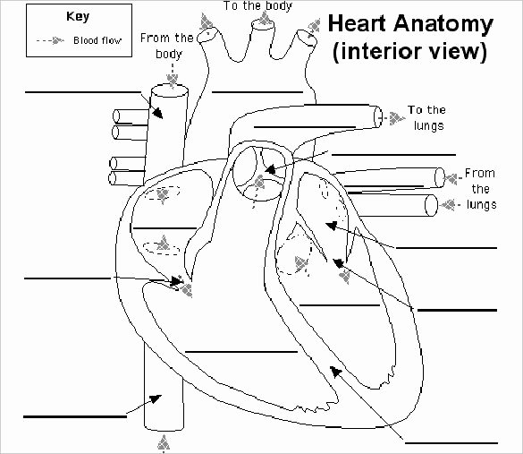 Label Heart Interior Doc Format31