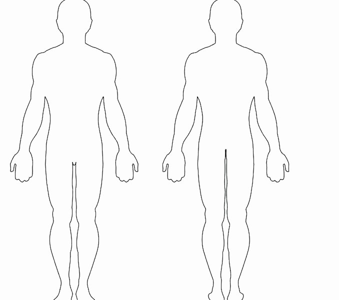 Blank Muscle Diagram Worksheet Elegant Drawing Template Fashion Printable Human Body for Kids