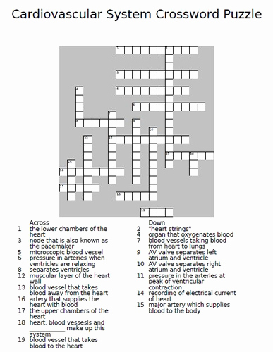 Body Systems Crossword Puzzle the Respiratory System Crossword Activity by Rajndhra