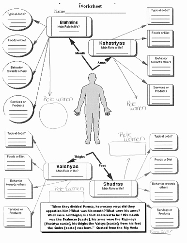Body Systems Worksheet Answers Worksheets Human Body Systems