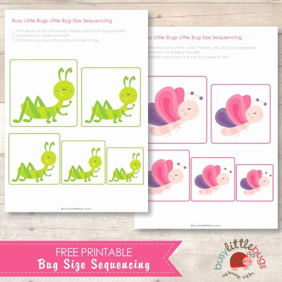 Bug Worksheets for Preschool Free Bug Size Sequencing Preschool