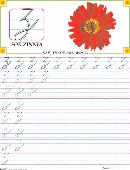 Capital Cursive Alphabet Cursive Capital Letter Z Practice Worksheet