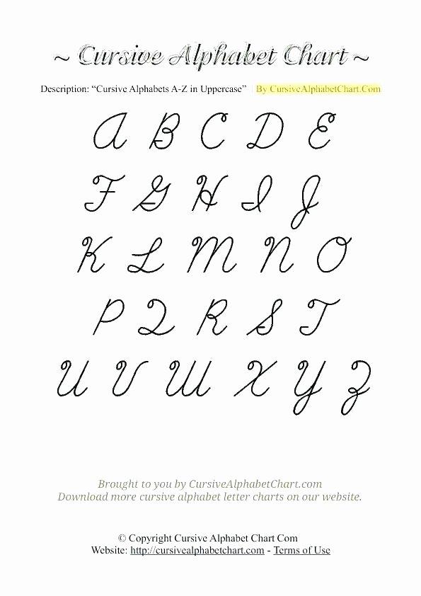 Capital Cursive Alphabet Cursive Letter Template