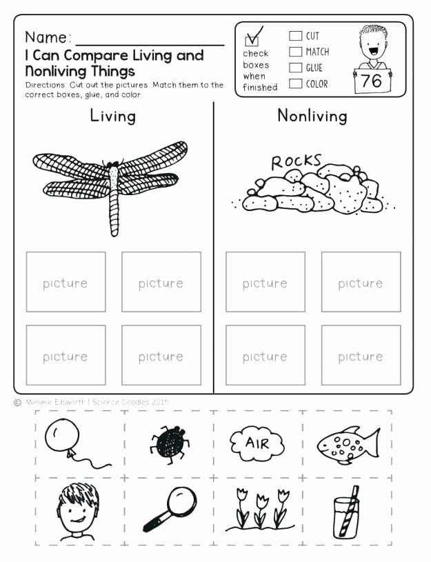 Categorizing Worksheets for Kindergarten Awesome Python Living Thing Pencil and In Color Free Worksheet