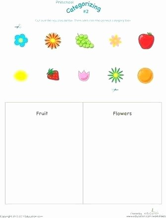 Categorizing Worksheets for Kindergarten Beautiful sorting Worksheets for Kindergarten