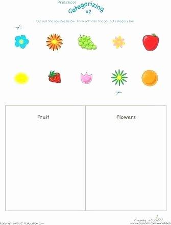 Categorizing Worksheets for Kindergarten Beautiful sorting Worksheets for Kindergarten