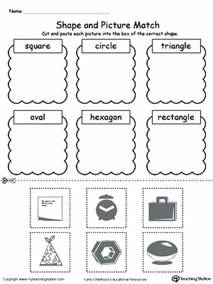Categorizing Worksheets for Kindergarten Lovely sorting Worksheets for Kindergarten Antihrap