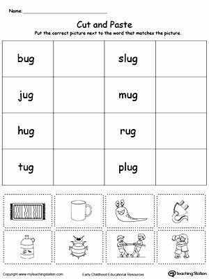 Categorizing Worksheets for Kindergarten New Early Childhood sorting and Categorizing Worksheets Free Cut