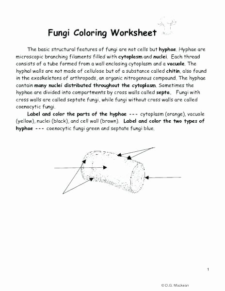 Cell Coloring Worksheets Collection Plant Cell Coloring Diagram