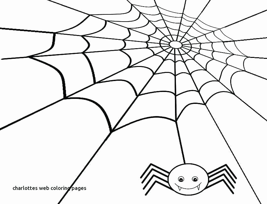 spider web coloring page awesome pages charlotte charlottes printable