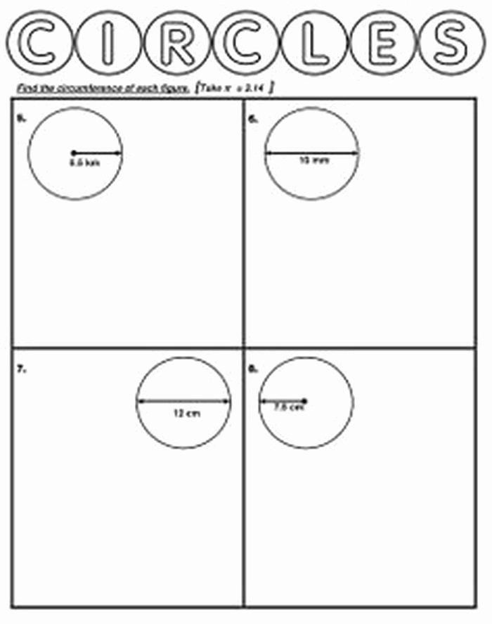 Circle Graphs Worksheets 7th Grade Circle Worksheet 7th Grade Math Antihrap