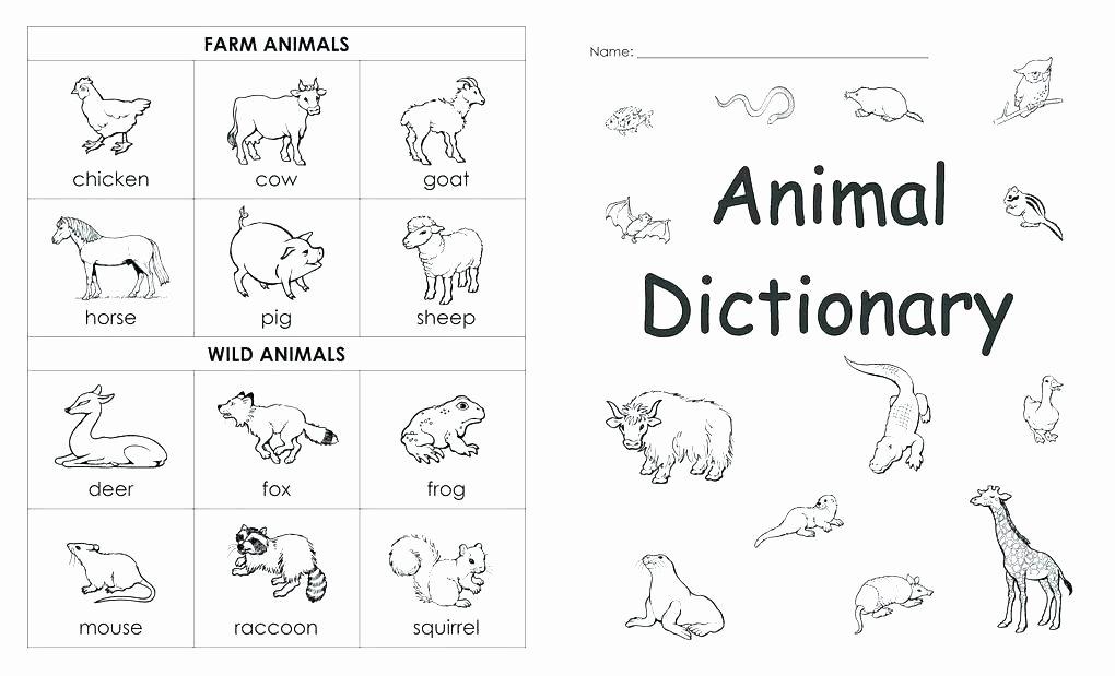 Ck Worksheets for 1st Grade Pet Worksheets for Grade 1