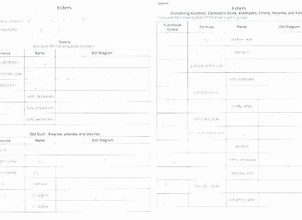 College Anatomy Worksheets the College Admission Process Workbook Worksheets Kid
