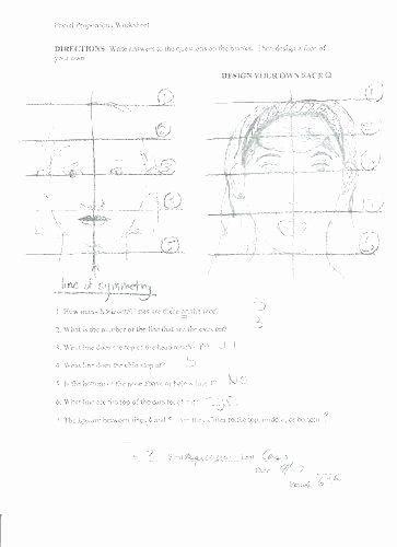 Compound Conjunction Crossword Irregular Preterite Practice Worksheets Verb Tense