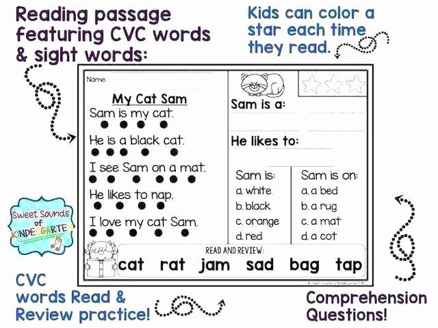Comprehension Worksheets for Kindergarten Primary Prehension Worksheets