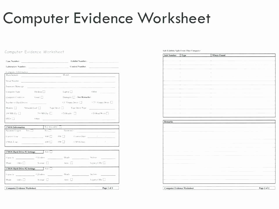 Computer Worksheets for Grade 1 Year 1 Science Worksheets – Primalvape