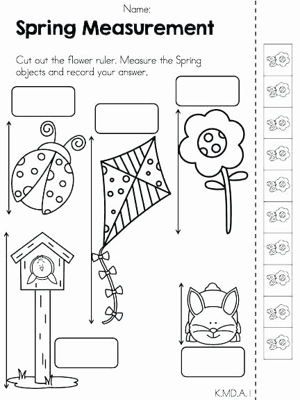 Cooking Measurement Conversion Worksheets Kindergarten Measuring Length Worksheet My Job Worksheets