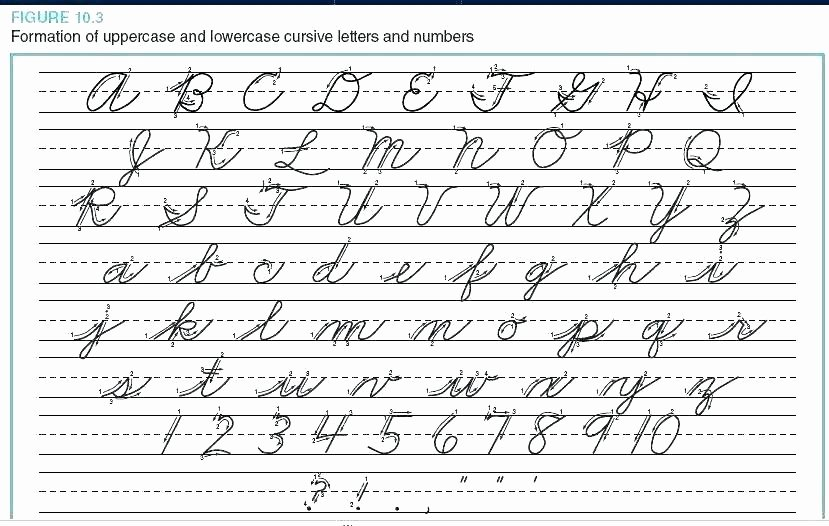 lowercase z in cursive writing uppercase letters worksheets capital and handwriting hand free printable dotted pdf for kin