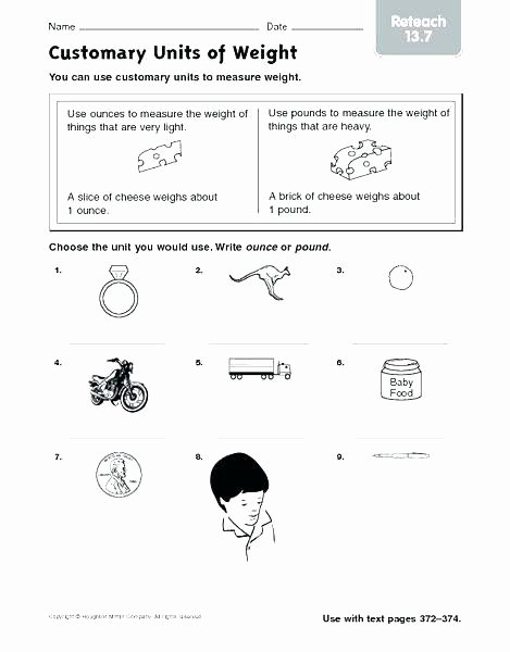 Customary Conversions Worksheet Microscopic Measurement Worksheet Science Lab tools