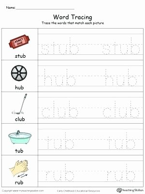Cvc Words Worksheets Pdf Cvc Word Family Worksheets