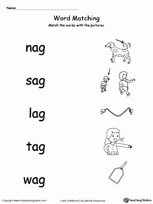 Cvc Worksheets Pdf Cvc at Family Worksheets Word Picture and Match Words with