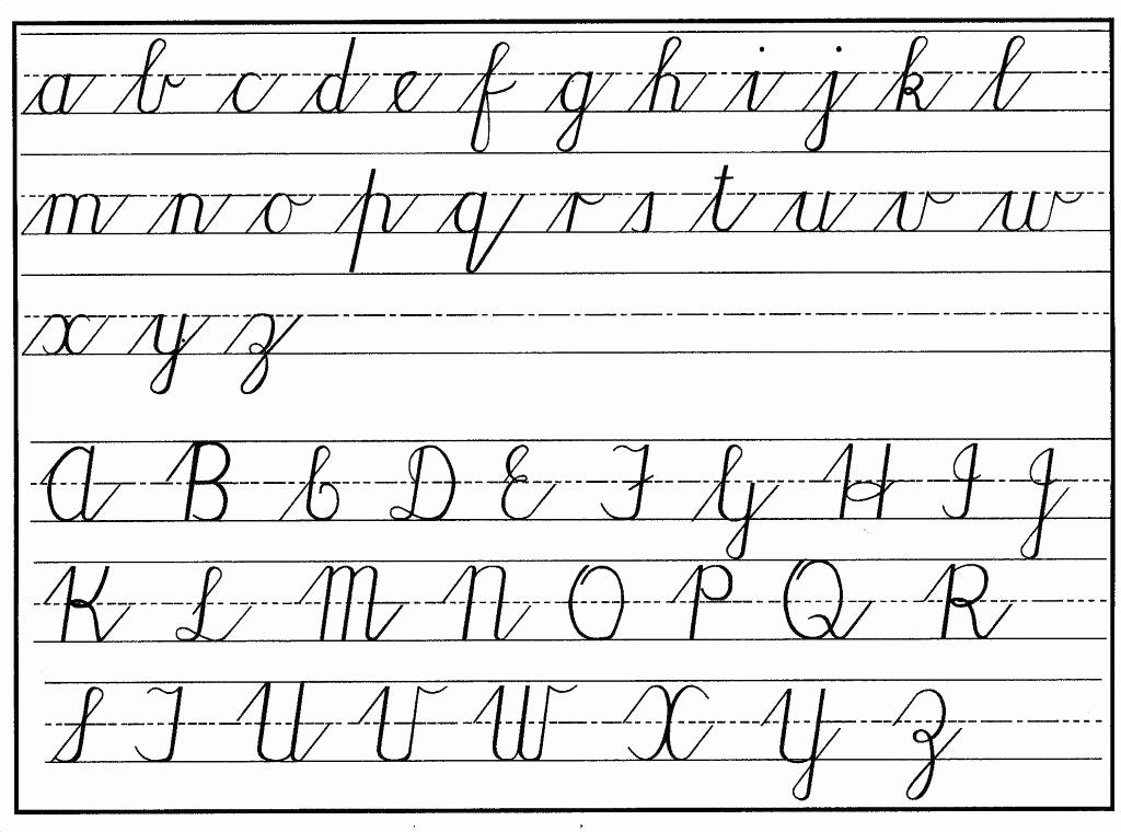 D Nealian Alphabet Worksheets D Nealian Cursive Handwriting Worksheets