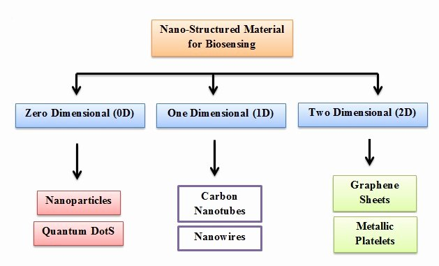 Difficult Dot to Dot Best Of Nanomaterials Based Acetylcholinesterase Biosensors for