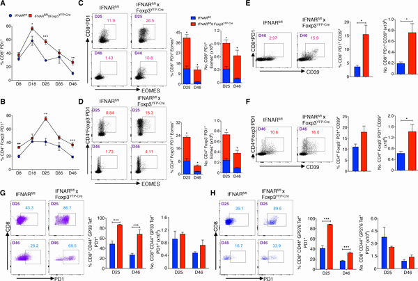 Difficult Dot to Dot Best Of Type I Interferon Signaling attenuates Regulatory T Cell