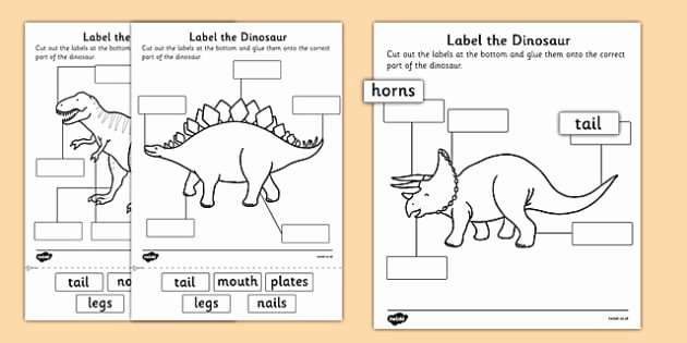 Dinosaur Worksheets for Kindergarten Label the Dinosaur Worksheet Primary Resources
