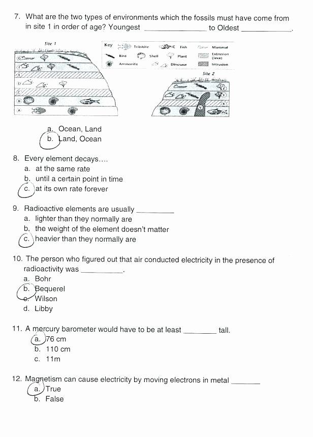 Dinosaur Worksheets Kindergarten Fossils for Kids Worksheets