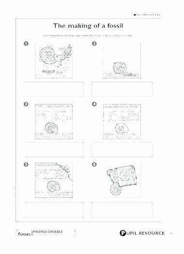 Dinosaur Worksheets Kindergarten Free Fossil Worksheets