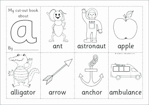 Diphthongs Oi Oy Worksheets Diphthongs Oi and Oy Worksheets View Worksheet Phonics