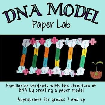 Dna Structure Worksheet High School Fresh Dna Model Paper Project Homeschooling Worksheets