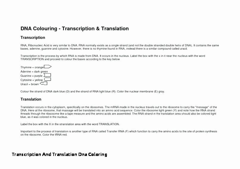 Dna Structure Worksheet High School Inspirational Dna Coloring Worksheet – Campoamorgolffo